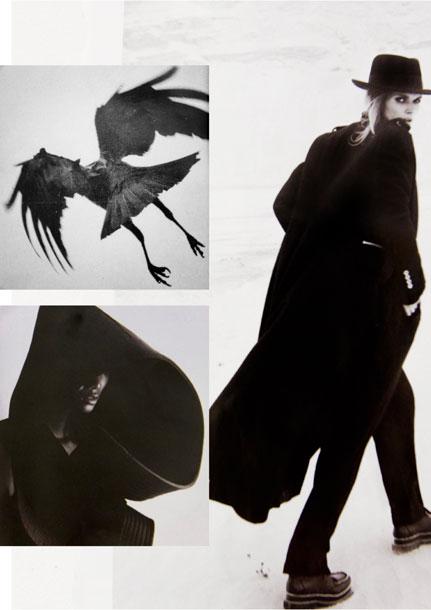 MONIKA-CHIANG-Birds-Inspiration